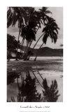 Coco Palms, Acapulco, 1932 Prints