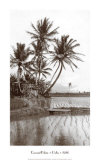 Coco Palms, Oahu, 1926 Posters