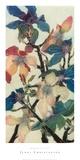 Magnolien XIII Kunstdrucke von Jenni Christensen
