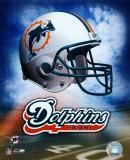 Miami Dolphins Helmet Logo Photo