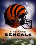 Bengals Helmet Logo ('04) Photo