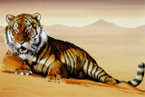 Tiger in Sand Print by Ken Messom
