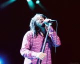 Counting Crows Photo