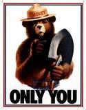 El oso Smokey: sólo tú puedes evitar los incendios Cartel de chapa