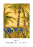 Bahama Splendor I Print by Jeff Surret