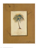 Tropical Palm III Prints by Victoria Splendore