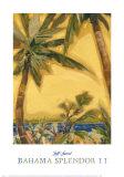 Bahama Splendor II Prints by Jeff Surret