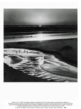 Birds on a Beach Poster by Ansel Adams