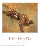 El Faisan Cobrizo I Posters by Selina Taylor