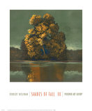Shades of Fall III Poster by Robert Holman