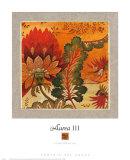Aurea III Prints by John Douglas