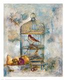 Song Bird I Print by  Dysart