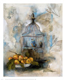 Song Bird II Prints by  Dysart