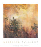 Woodland Twilight Prints by Jennifer Hollack