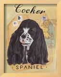 Cocker Spaniel Poster by Claire Pavlik Purgus
