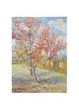 Blommande persikoträd i Arles, 1888 Gicléetryck av Vincent van Gogh
