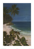 Caribbean Escape I Print by Cheryl Kessler-Romano