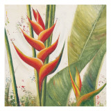 Helliconias with Leaves I Prints by Patricia Quintero-Pinto