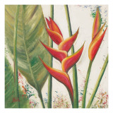Helliconias with Leaves II Poster by Patricia Quintero-Pinto