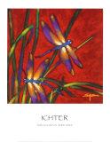 Sueños de libélula Láminas por Robert Ichter