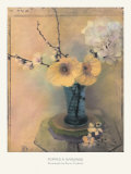 Poppies and Hydrangea Posters by Susan Friedman