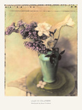 Lilac and Columbine Prints by Susan Friedman