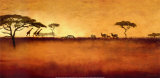 Serengeti I Kunstdruck von Tandi Venter