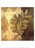 Leaf Patterns IV Print by Linda Thompson