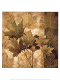Leaf Patterns II Poster by Linda Thompson