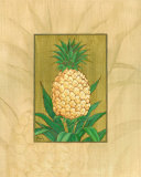 Queen Pineapple Prints by Paul Brent