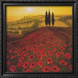 Poppy Field Prints by Steve Thoms