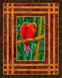 Mandarine Lovebird Prints by Paul Brent