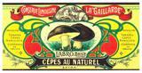 Cèpes au Naturel Posters