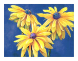 Rudbeckias Prints by M. de Flavis