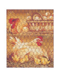 Poule Blanche Prints by Pascal Cessou