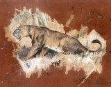 La Lionne Posters by Laurence David