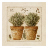 Herbes de Provence, Thym Prints by Pascal Cessou