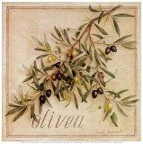 Olivea Prints by Vincent Jeannerot