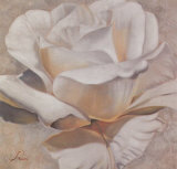 White Passion II Poster by Rumi 