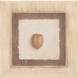 Walnut Prints by Vincent Jeannerot