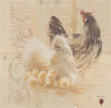 Les Poules Prints by Pascal Cessou