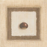 Chestnut Prints by Vincent Jeannerot