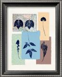 Leaf 101 Prints by Inka Zlin