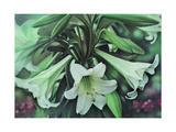 Easter Lillies by Kirsten Soderlind Giclee Print by Kirsten Soderlind