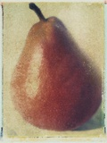 Seckle Pear Photographic Print by Jennifer Kennard