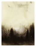 Forest Giclee Print by Brenda Chrystie