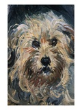 Detail of Yorkshire Terrier from Eugenie Graff (Madame Paul) Giclee Print by Claude Monet