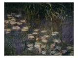 Detail of Waterlilies from The Morning Giclee Print by Claude Monet