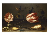 Flowers, Insects, and a Shell Giclee Print by Balthasar van der Ast