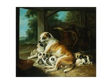 A Mother with Her Puppies Giclee Print by Christophe Huet